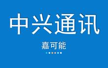 【嘉可能】2月25日 中兴通讯 缠论系统