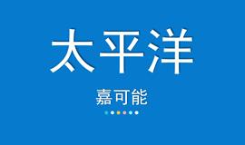 【嘉可能】3月1日 太平洋 缠论画线系统