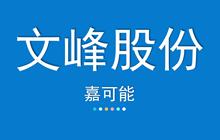 【嘉可能】3月6日 文峰股份 缠论自动画