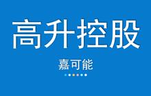 【嘉可能】3月6日 高升控股 缠论自动画